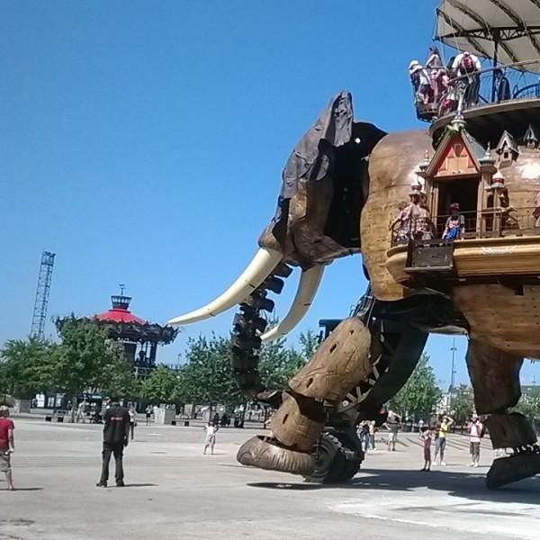 Eléphant - Machine de l'île